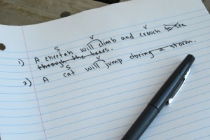 Sentence Grammar Check